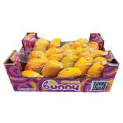 Manila Mango Large Box