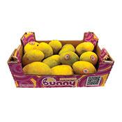 Manila Mango Medium Box