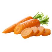 Carrot Jumbo